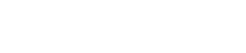 The Vassar Team Logo